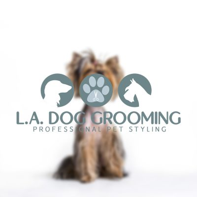 dog grooing logo, teal, white, long haired dachund, schnauzer, sillhoutte