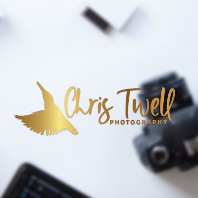 photography logo, wildlife, kingfisher, gold, watermark, photographer branding, ideas, bird silhoutte